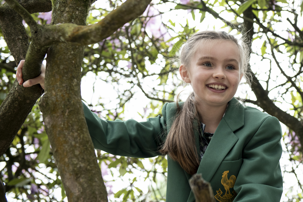 girl climbing a tree at Chinthurst School in Tadworth