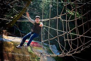 boy on rope climbing frame in trees