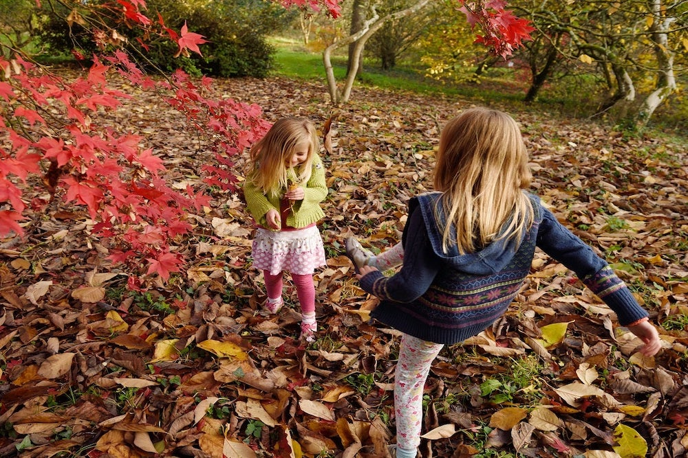 two blonde girls kicking autumn leaves at National Trust venue